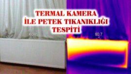 PETEK TEMİZLEME